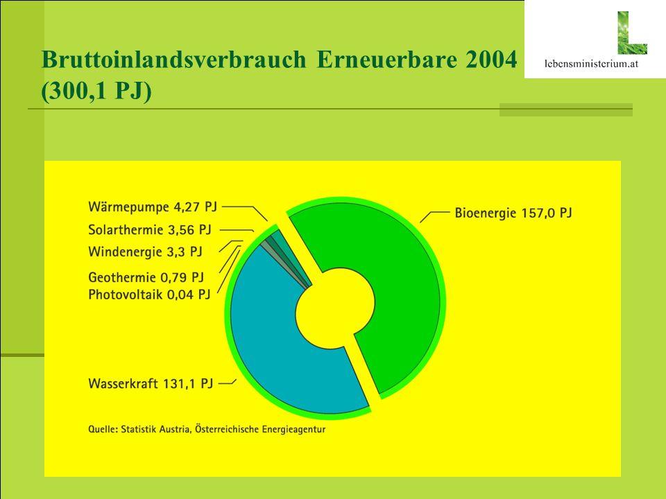 Bruttoinlandsverbrauch Erneuerbare 2004 (300,1 PJ)