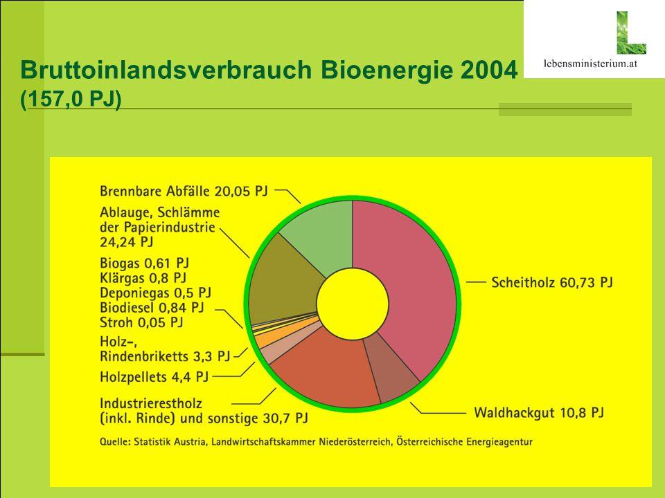 Bruttoinlandsverbrauch Bioenergie 2004 (157,0 PJ)