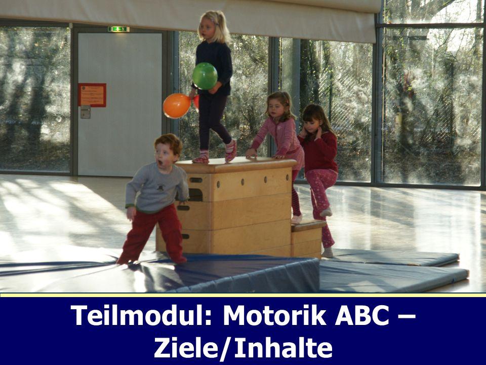 Vielen Dank für Ihre Aufmerksamkeit! Teilmodul: Motorik ABC – Ziele/Inhalte