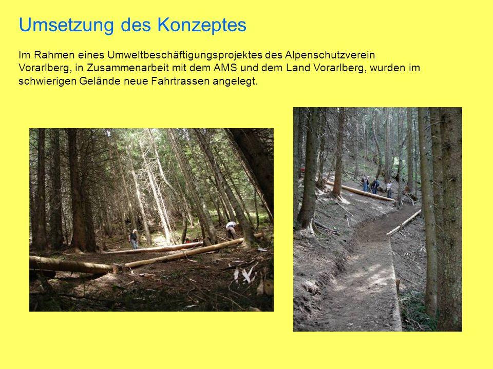 Im Rahmen eines Umweltbeschäftigungsprojektes des Alpenschutzverein Vorarlberg, in Zusammenarbeit mit dem AMS und dem Land Vorarlberg, wurden im schwierigen Gelände neue Fahrtrassen angelegt.