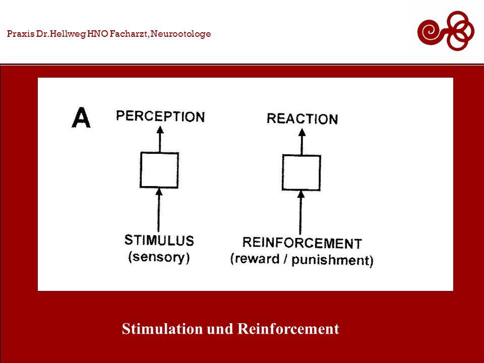 Praxis Dr.Hellweg HNO Facharzt, Neurootologe Stimulation und Reinforcement