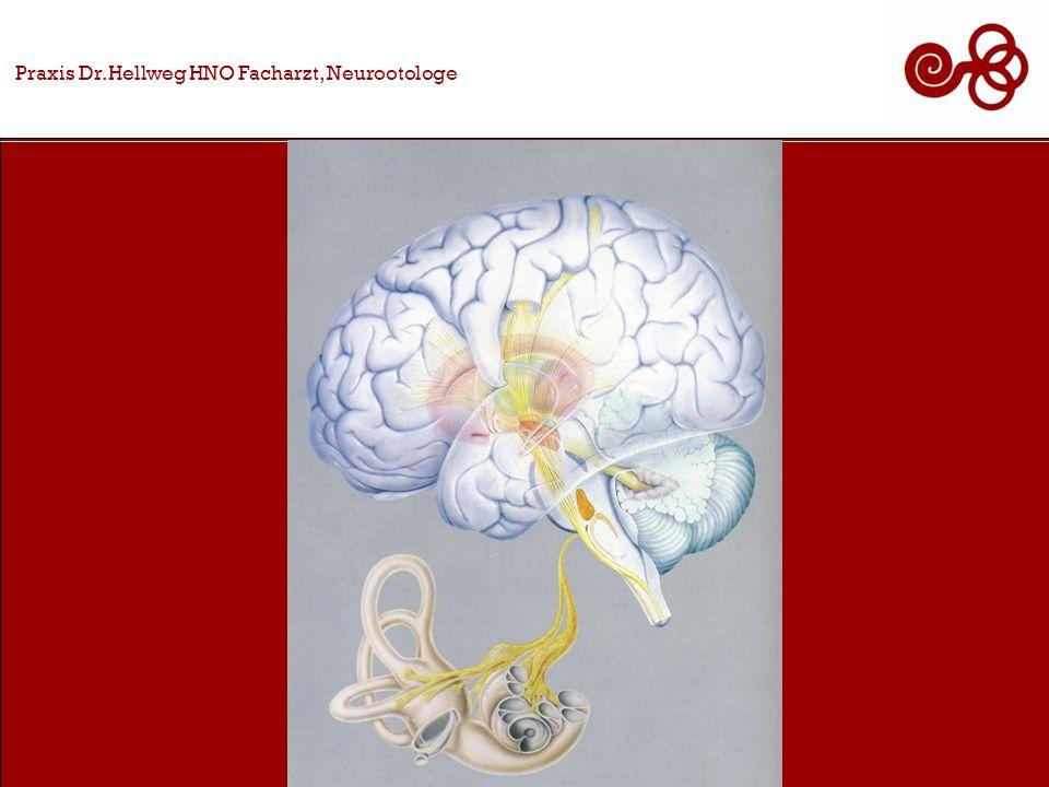 Praxis Dr.Hellweg HNO Facharzt, Neurootologe