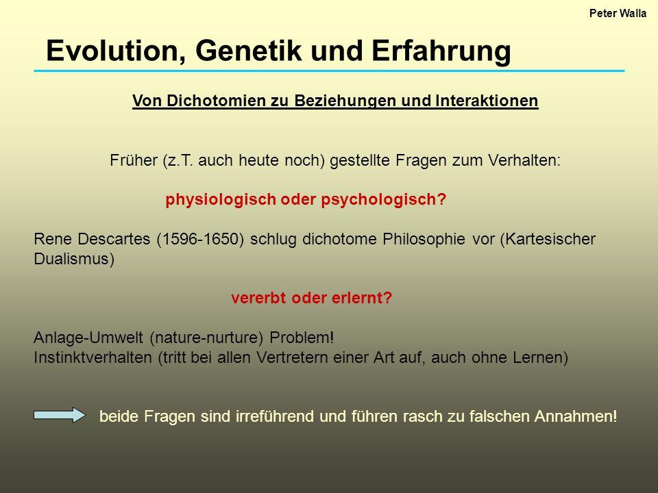 Evolution, Genetik und Erfahrung Von Dichotomien zu Beziehungen und Interaktionen Früher (z.T. auch heute noch) gestellte Fragen zum Verhalten: physio