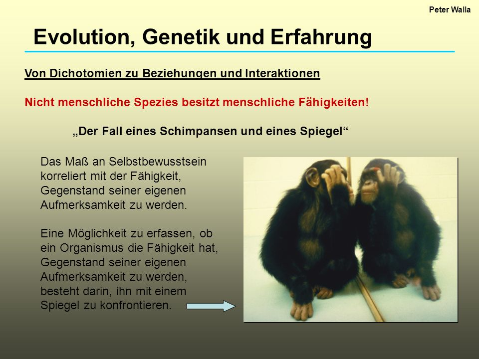 Evolution, Genetik und Erfahrung Von Dichotomien zu Beziehungen und Interaktionen Nicht menschliche Spezies besitzt menschliche Fähigkeiten! Der Fall