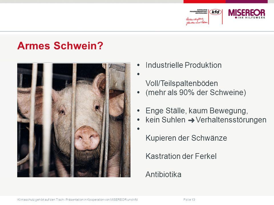 Folie 13 Klimaschutz gehört auf den Tisch ˗ Präsentation in Kooperation von MISEREOR und kfd Armes Schwein? Industrielle Produktion Voll/Teilspaltenbö