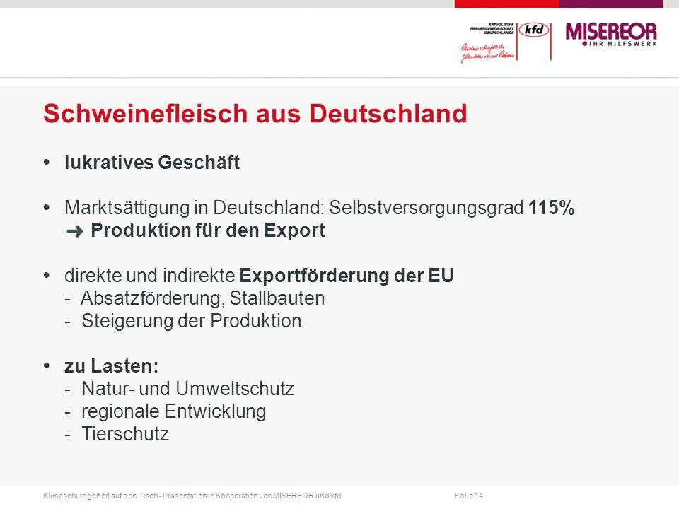 Folie 14 Klimaschutz gehört auf den Tisch ˗ Präsentation in Kooperation von MISEREOR und kfd Schweinefleisch aus Deutschland lukratives Geschäft Markt