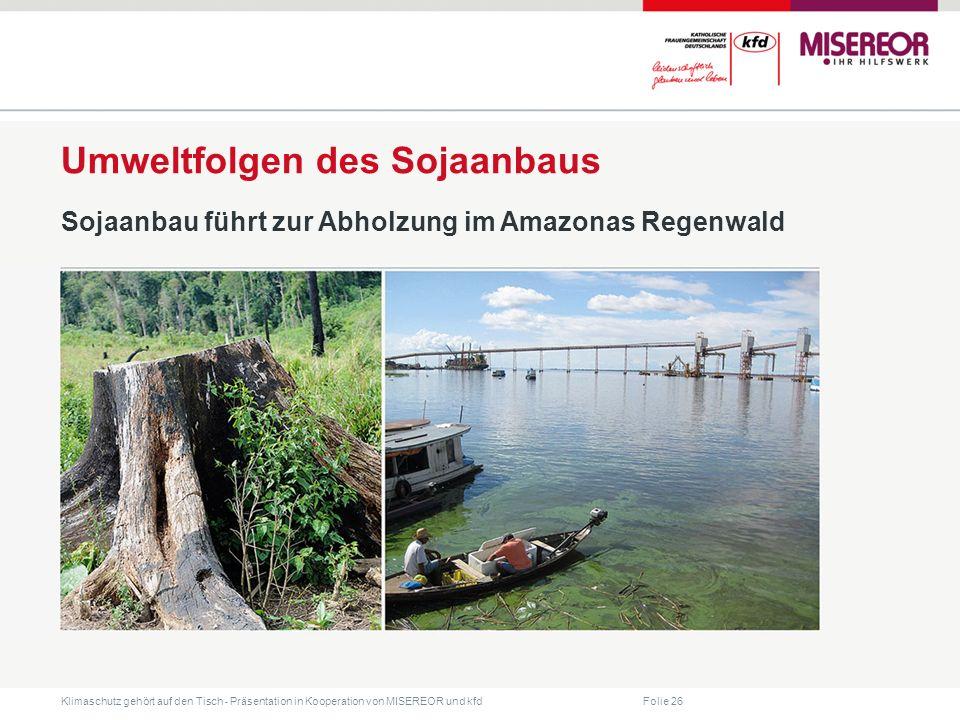 Folie 26 Klimaschutz gehört auf den Tisch ˗ Präsentation in Kooperation von MISEREOR und kfd Umweltfolgen des Sojaanbaus Sojaanbau führt zur Abholzung im Amazonas Regenwald