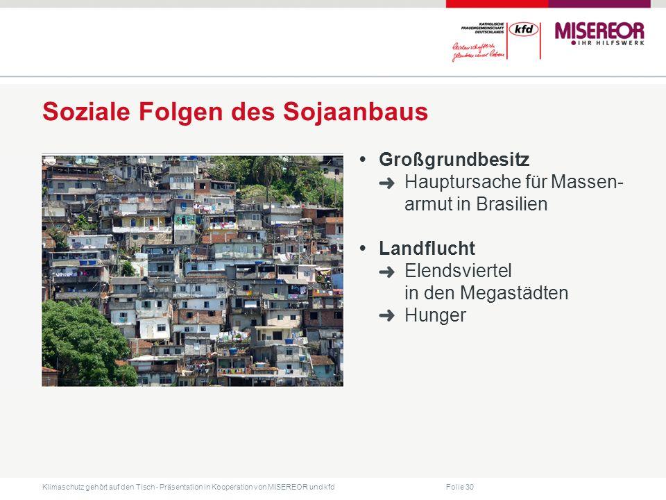 Folie 30 Klimaschutz gehört auf den Tisch ˗ Präsentation in Kooperation von MISEREOR und kfd Soziale Folgen des Sojaanbaus Großgrundbesitz Hauptursache für Massen- armut in Brasilien Landflucht Elendsviertel in den Megastädten Hunger