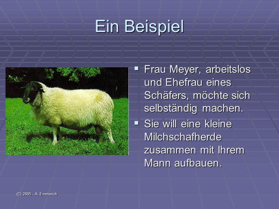 (C) 2005 - A. Emmerich Danke für Ihre Aufmerksamkeit