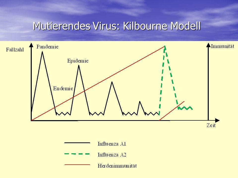 Mutierendes Virus: Kilbourne Modell