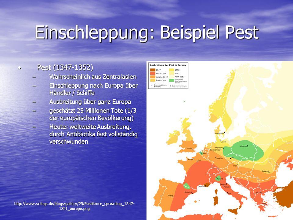Einschleppung: Beispiel Pest Pest (1347-1352)Pest (1347-1352) –Wahrscheinlich aus Zentralasien –Einschleppung nach Europa über Händler / Schiffe –Ausb