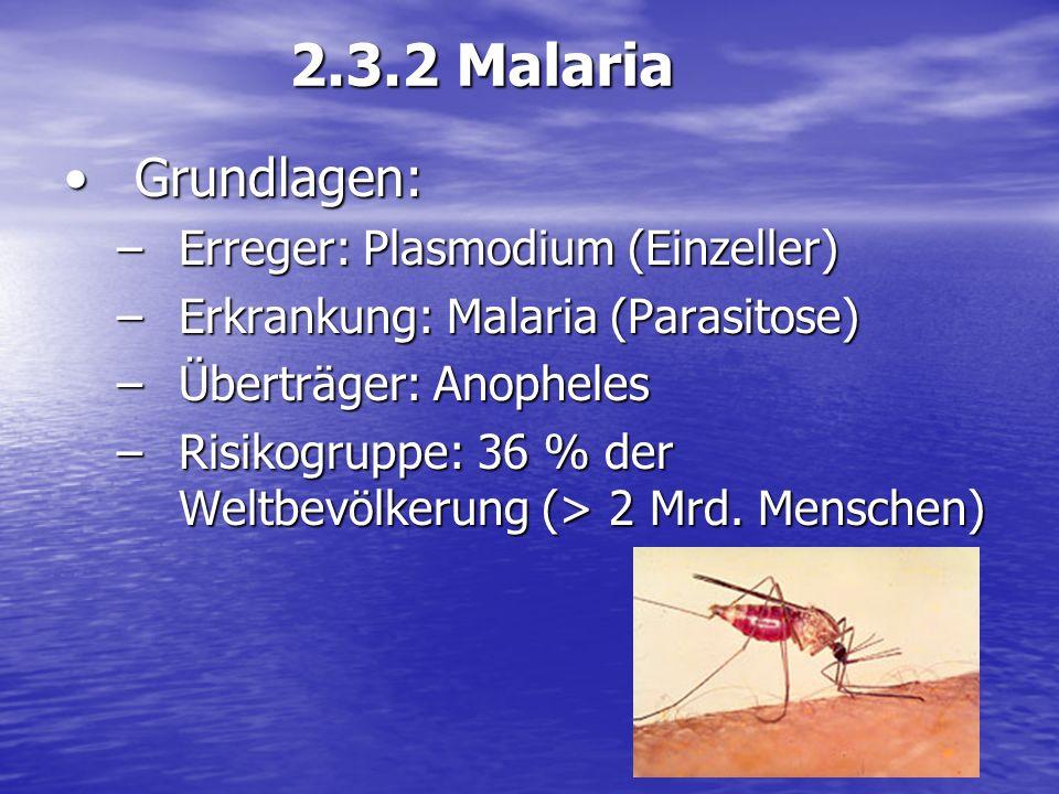 Grundlagen:Grundlagen: –Erreger: Plasmodium (Einzeller) –Erkrankung: Malaria (Parasitose) –Überträger: Anopheles –Risikogruppe: 36 % der Weltbevölkeru