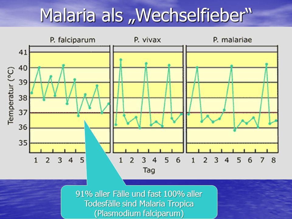 Malaria als Wechselfieber 91% aller Fälle und fast 100% aller Todesfälle sind Malaria Tropica (Plasmodium falciparum)