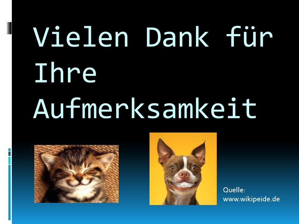 Vielen Dank für Ihre Aufmerksamkeit Quelle: www.wikipeide.de