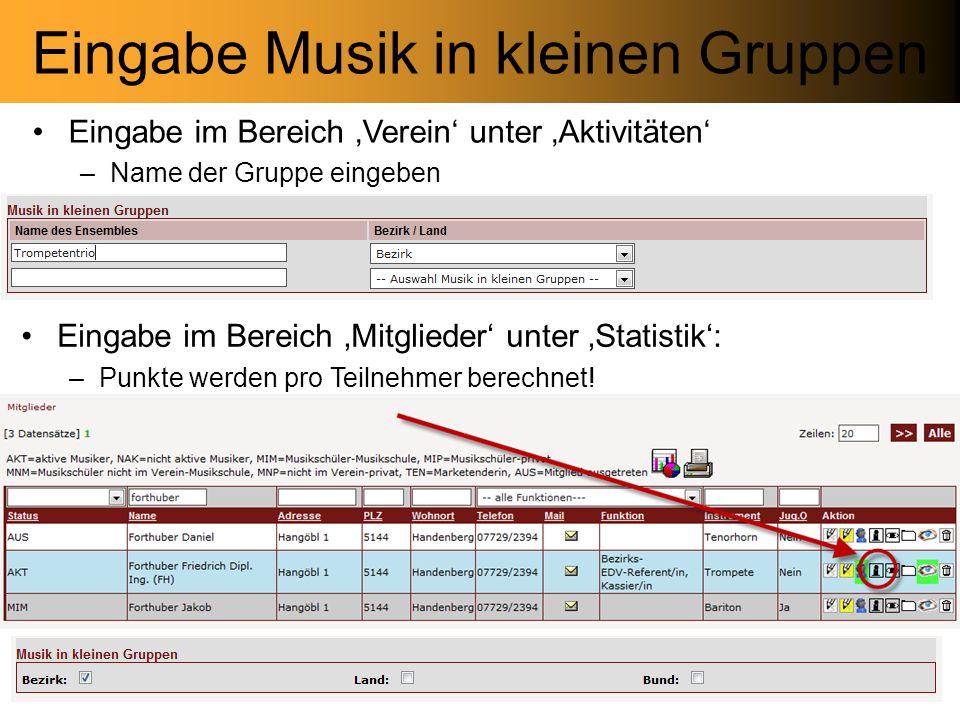 Eingabe Musik in kleinen Gruppen Eingabe im Bereich Mitglieder unter Statistik: –Punkte werden pro Teilnehmer berechnet.