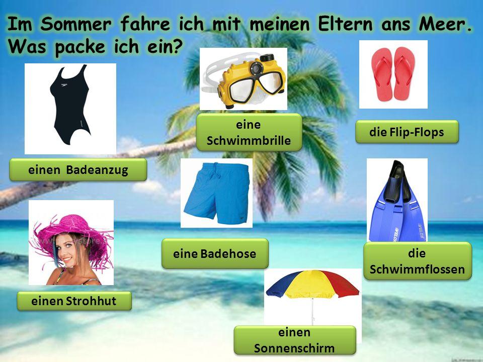 einen Badeanzug eine Schwimmbrille die Flip-Flops einen Strohhut eine Badehose einen Sonnenschirm die Schwimmflossen