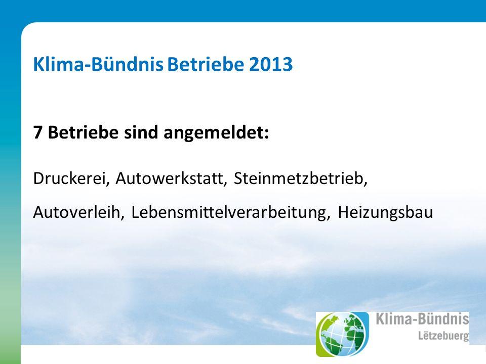 Klima-Bündnis Betriebe 2013 7 Betriebe sind angemeldet: Druckerei, Autowerkstatt, Steinmetzbetrieb, Autoverleih, Lebensmittelverarbeitung, Heizungsbau