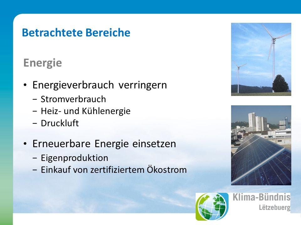 Energie Energieverbrauch verringern Stromverbrauch Heiz- und Kühlenergie Druckluft Erneuerbare Energie einsetzen Eigenproduktion Einkauf von zertifiziertem Ökostrom Betrachtete Bereiche