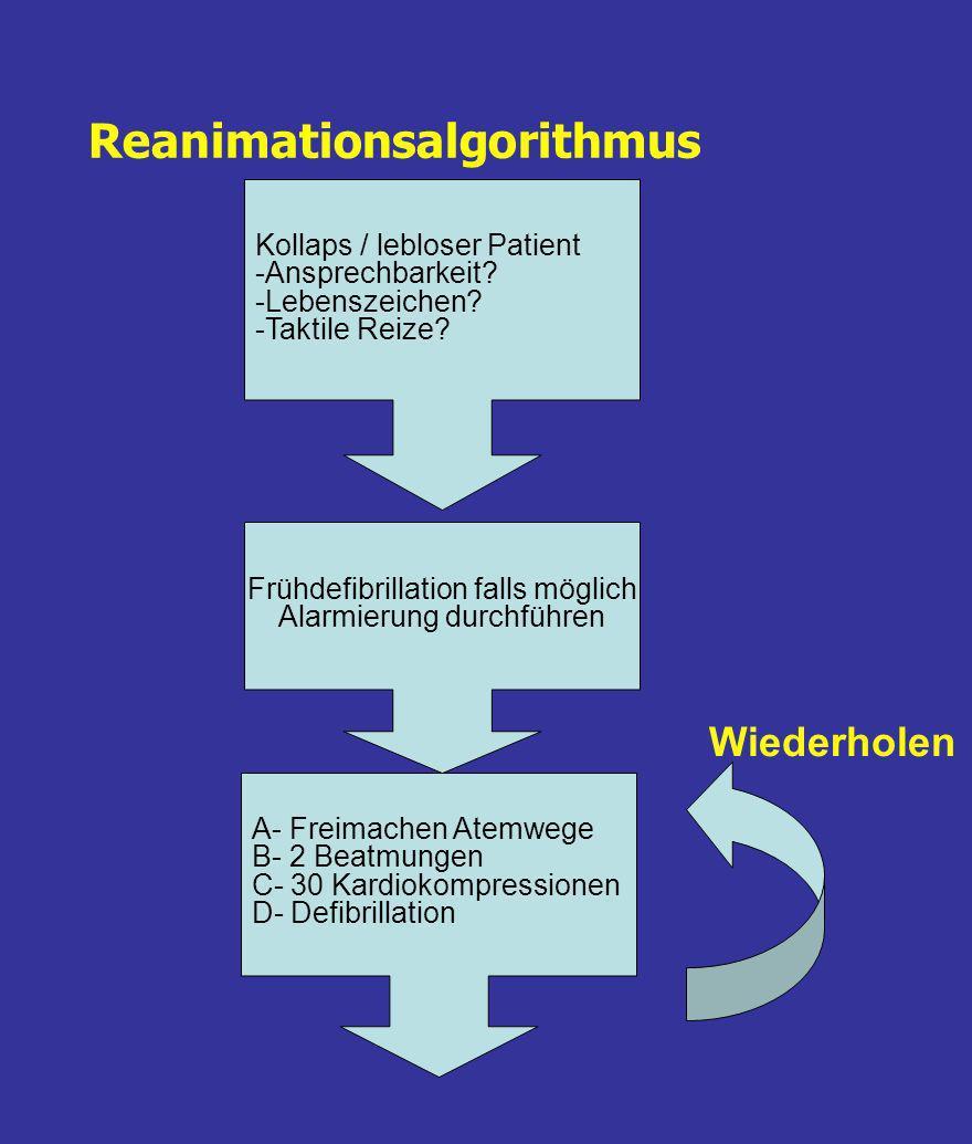 Reanimationsalgorithmus Kollaps / lebloser Patient -Ansprechbarkeit.