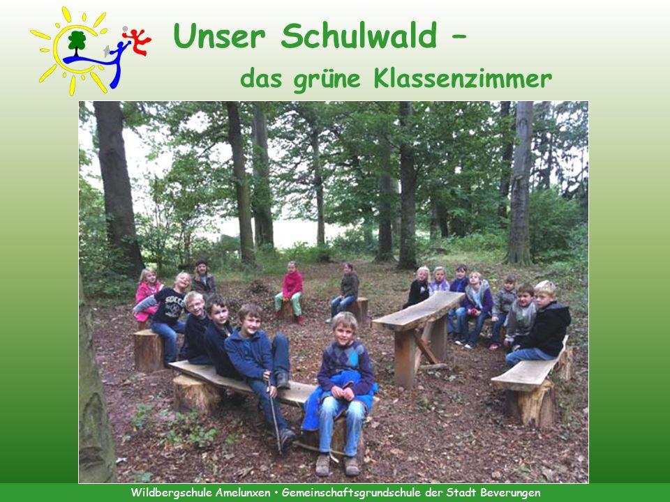 Wildbergschule Amelunxen Gemeinschaftsgrundschule der Stadt Beverungen Unser Schulwald – das grüne Klassenzimmer