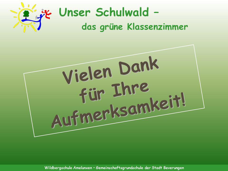 Wildbergschule Amelunxen Gemeinschaftsgrundschule der Stadt Beverungen Unser Schulwald – das grüne Klassenzimmer Vielen Dank für Ihre Aufmerksamkeit!