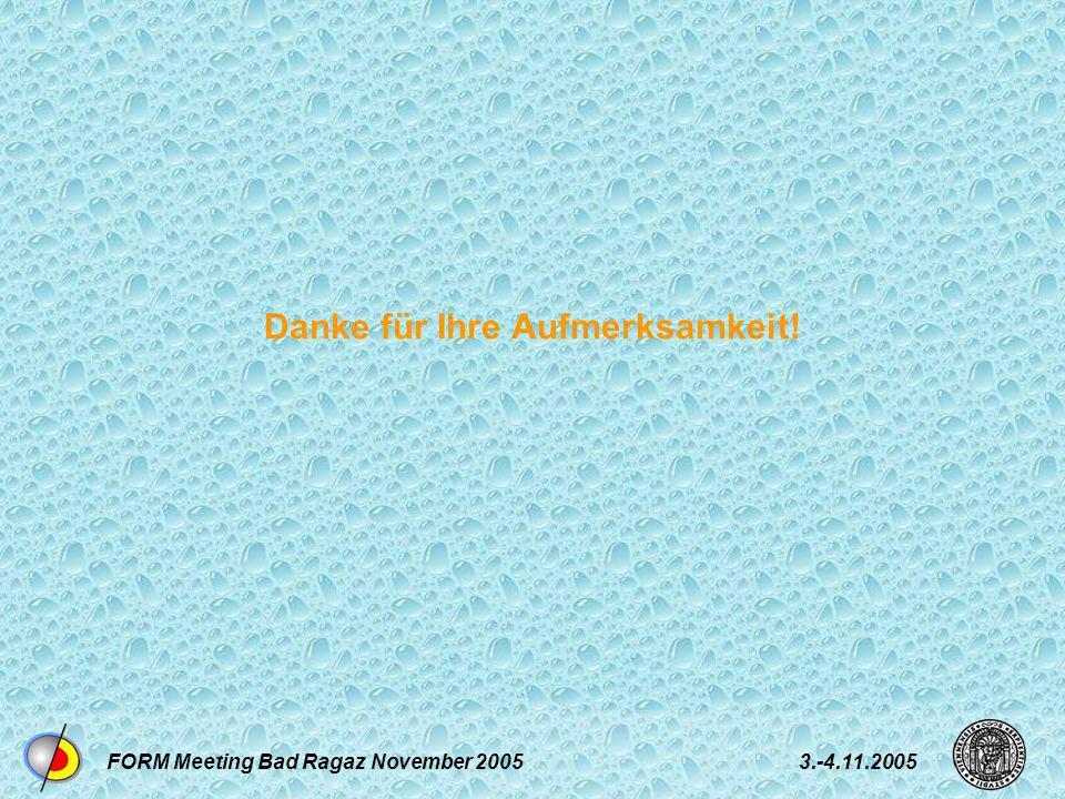 FORM Meeting Bad Ragaz November 20053.-4.11.2005 Danke für Ihre Aufmerksamkeit!