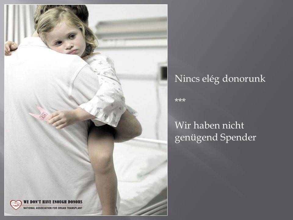 Nincs elég donorunk *** Wir haben nicht genügend Spender