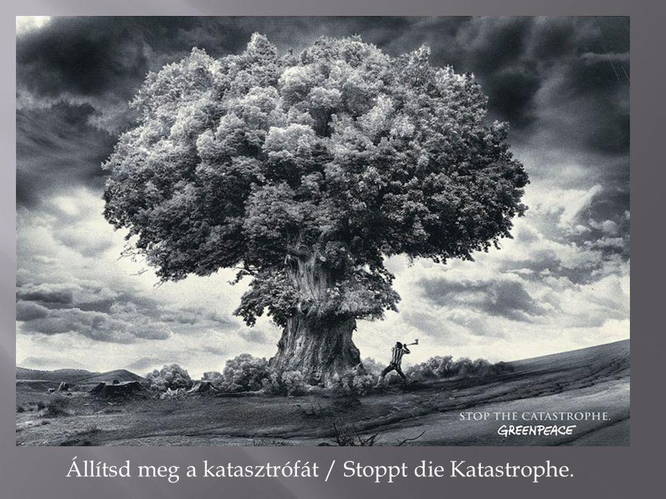 Állítsd meg a katasztrófát / Stoppt die Katastrophe.