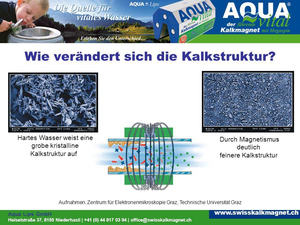 Aqua Lips GmbH Heiselstraße 37, 8155 Niederhasli | +41 (0) 44 817 03 94 | office@swisskalkmagnet.ch www.swisskalkmagnet.ch Wie verändert sich die Kalkstruktur.