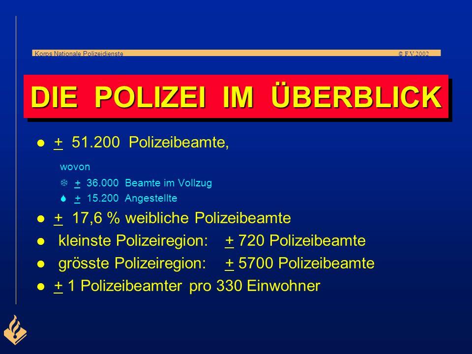 Korps Nationale Polizeidienste © F.V.2002 O PL DIE IN DEN NIEDERLANDEN I ZE I