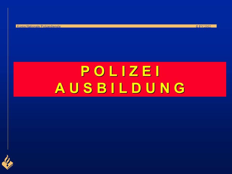 Korps Nationale Polizeidienste © F.V.2002 SONSTIGE FAHNDUNGSBEHÖRDEN In Ergänzung zu den regulären Polizeibehörden gibt es weitere Behörden mit spezif