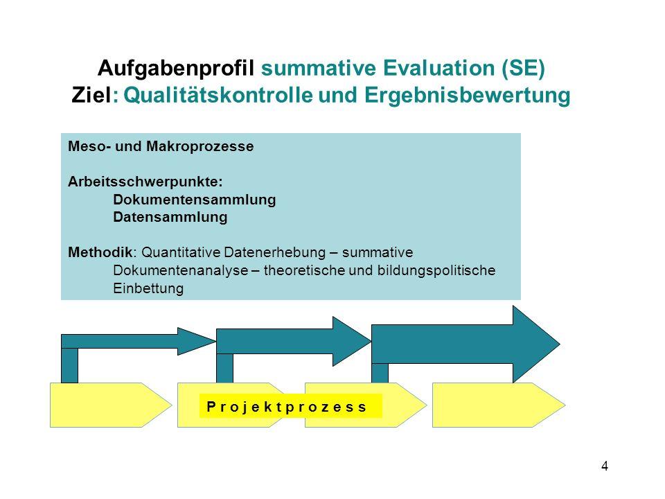 4 Aufgabenprofil summative Evaluation (SE) Ziel: Qualitätskontrolle und Ergebnisbewertung Meso- und Makroprozesse Arbeitsschwerpunkte: Dokumentensamml