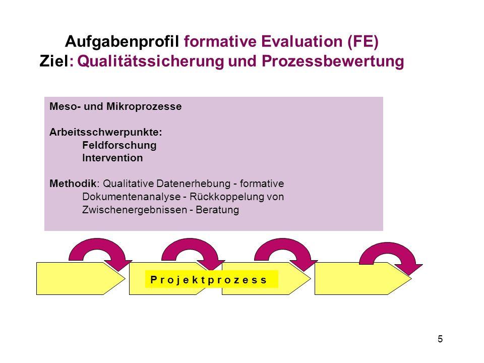 5 Aufgabenprofil formative Evaluation (FE) Ziel: Qualitätssicherung und Prozessbewertung Meso- und Mikroprozesse Arbeitsschwerpunkte: Feldforschung In