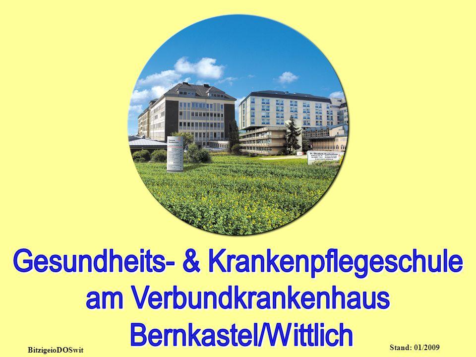 Heilberufliche Aufgaben Ärzte/innen Zahnärzte/-innen Apotheker/-innen Praxisorganisation & medizinische Assistenz Med.