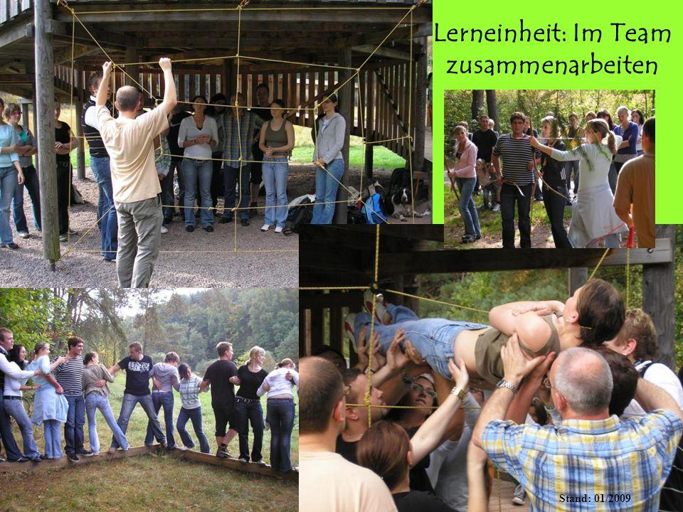Lerneinheit: Im Team zusammenarbeiten BitzigeioDOSwit Stand: 01/2009