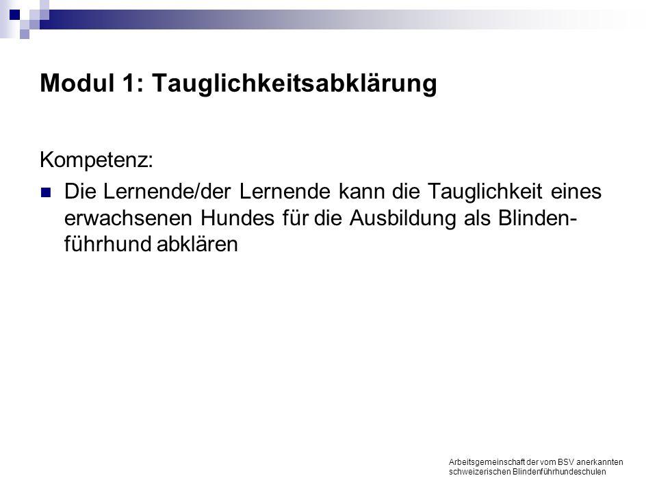 Modul 1: Tauglichkeitsabklärung Kompetenz: Die Lernende/der Lernende kann die Tauglichkeit eines erwachsenen Hundes für die Ausbildung als Blinden- führhund abklären Arbeitsgemeinschaft der vom BSV anerkannten schweizerischen Blindenführhundeschulen