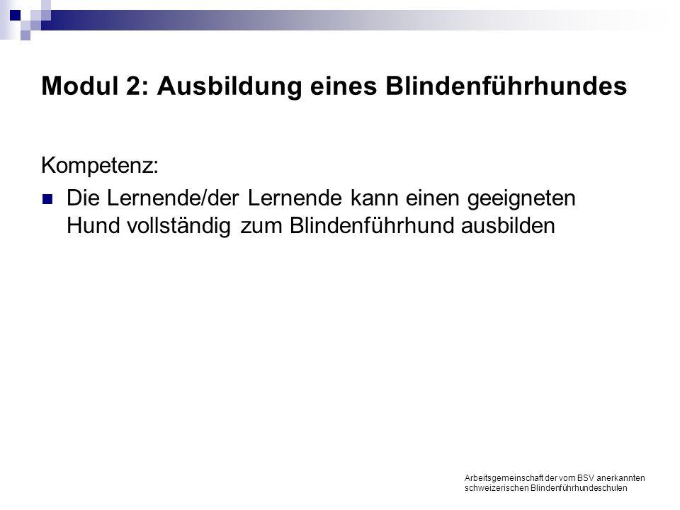 Modul 3: Gleichzeitige Ausbildung verschiedener Hundetypen Kompetenz: Die Lernende/der Lernende kann gleichzeitig verschiedene geeignete Hundetypen vollständig zu Blindenführhunden ausbilden Arbeitsgemeinschaft der vom BSV anerkannten schweizerischen Blindenführhundeschulen