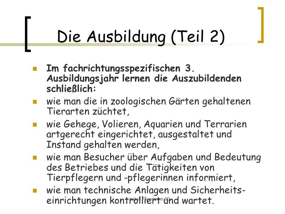 Isabell Papenbrock, 8D Die Ausbildung (Teil 2) Im fachrichtungsspezifischen 3.