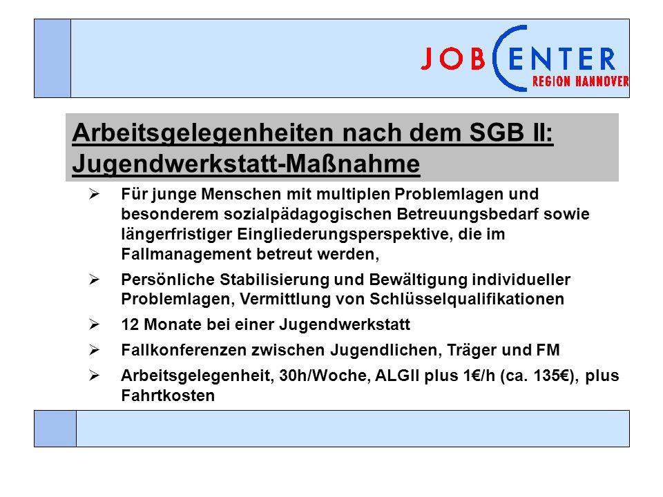 Arbeitsgelegenheiten nach dem SGB II: Jugendwerkstatt-Maßnahme Für junge Menschen mit multiplen Problemlagen und besonderem sozialpädagogischen Betreu