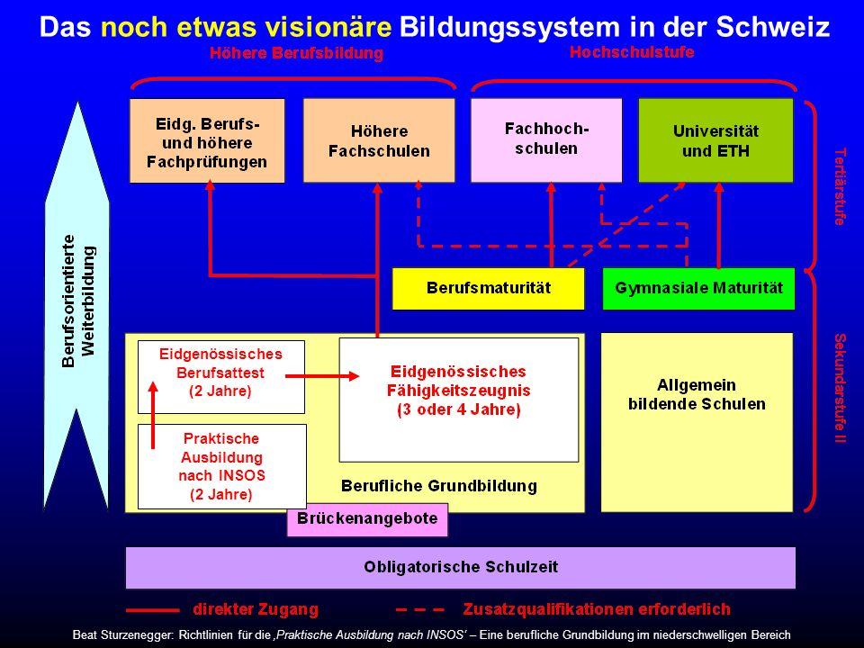 Das noch etwas visionäre Bildungssystem in der Schweiz Praktische Ausbildung nach INSOS (2 Jahre) Eidgenössisches Berufsattest (2 Jahre) Beat Sturzene