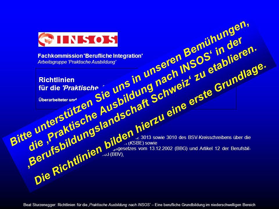 Fachkommission 'Berufliche Integration' Arbeitsgruppe 'Praktische Ausbildung' Richtlinien für die 'Praktische Ausbildung' INSOS Überarbeiteter und erg