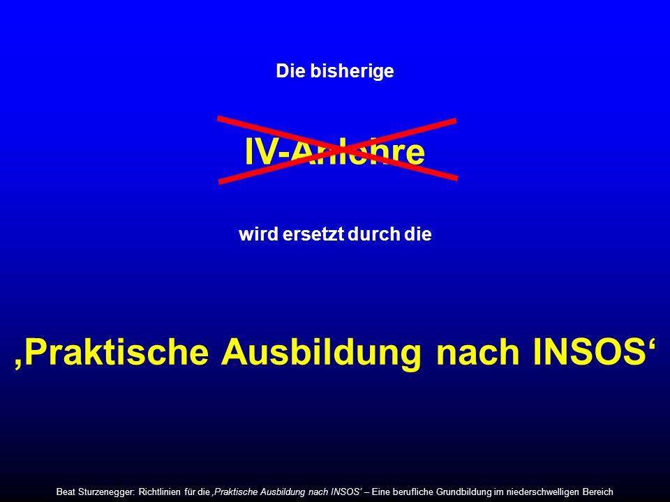 IV-Anlehre Die bisherige wird ersetzt durch die Praktische Ausbildung nach INSOS Beat Sturzenegger: Richtlinien für die Praktische Ausbildung nach INS