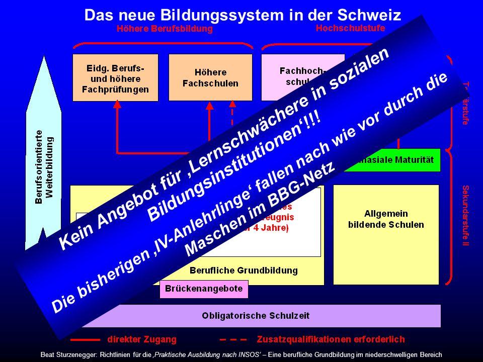 Das neue Bildungssystem in der Schweiz Eidgenössisches Berufsattest (2 Jahre) Kein Angebot für Lernschwächere in sozialen Bildungsinstitutionen!!! Die