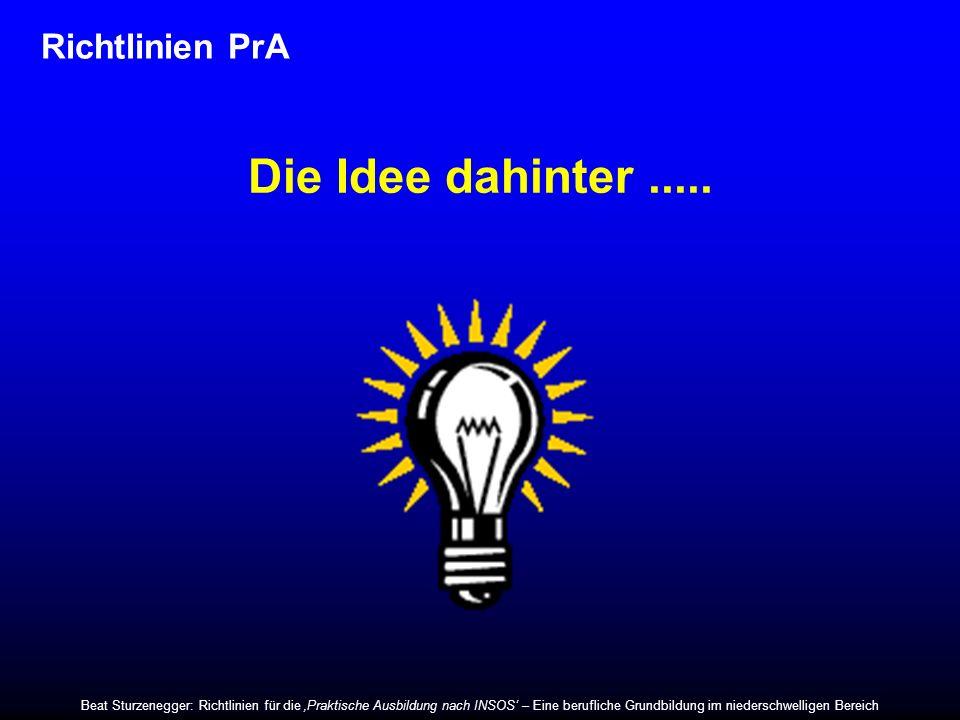 Richtlinien PrA Die Idee dahinter..... Beat Sturzenegger: Richtlinien für die Praktische Ausbildung nach INSOS – Eine berufliche Grundbildung im niede