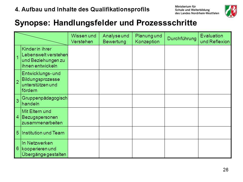 26 Synopse: Handlungsfelder und Prozessschritte Wissen und Verstehen Analyse und Bewertung Planung und Konzeption Durchführung Evaluation und Reflexio