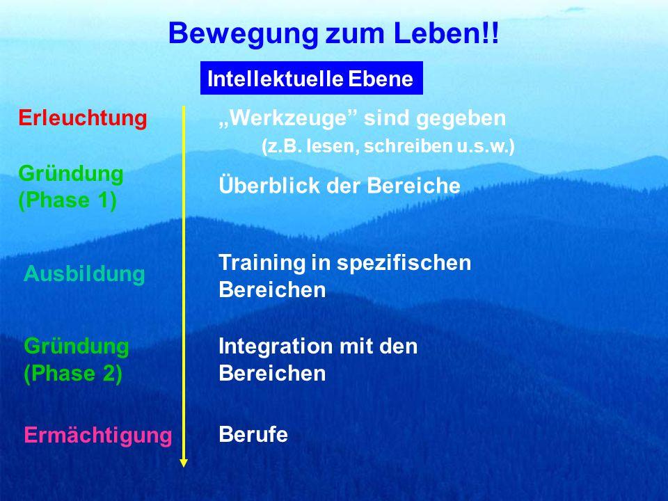 Intellektuelle Ebene Werkzeuge sind gegeben (z.B. lesen, schreiben u.s.w.) Überblick der Bereiche Training in spezifischen Bereichen Integration mit d