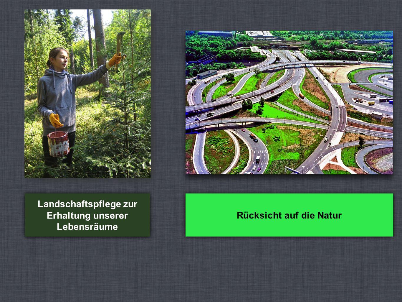 Landschaftspflege zur Erhaltung unserer Lebensräume Rücksicht auf die Natur