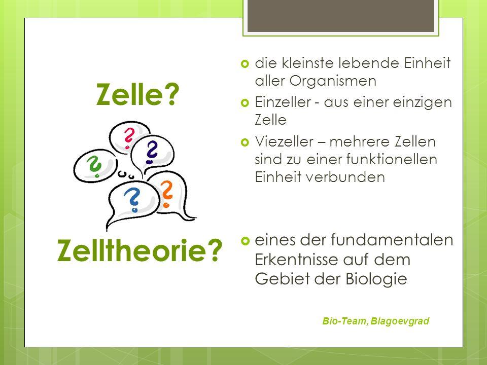 Zelle.Bio-Team, Blagoevgrad Zelltheorie.