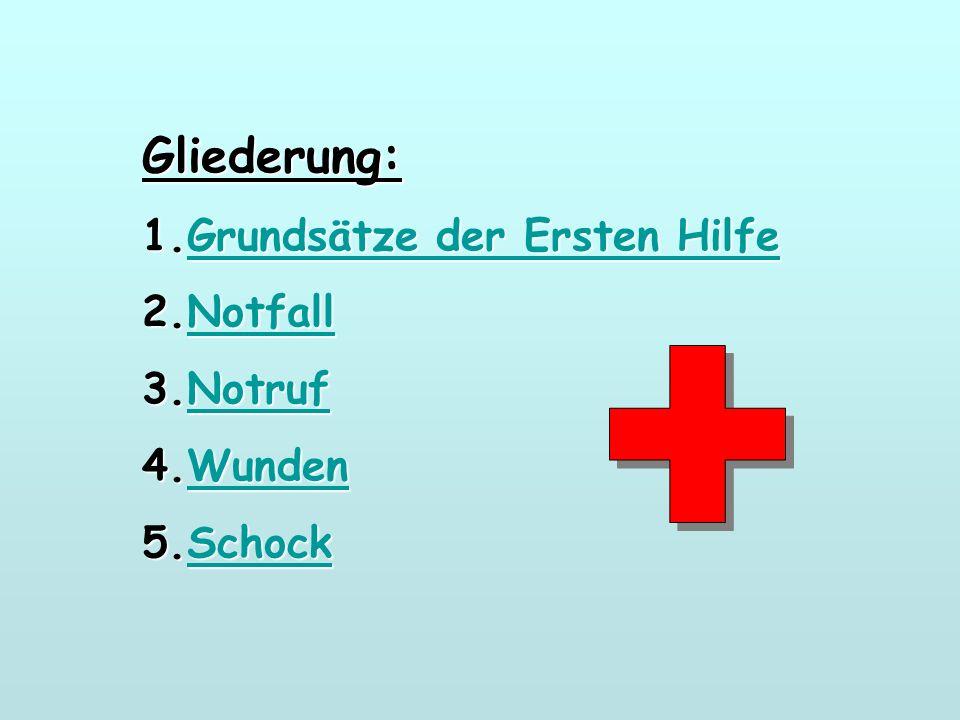 Gliederung: 1.Grundsätze der Ersten Hilfe Grundsätze der Ersten HilfeGrundsätze der Ersten Hilfe 2.Notfall Notfall 3.Notruf Notruf 4.Wunden Wunden 5.Schock Schock