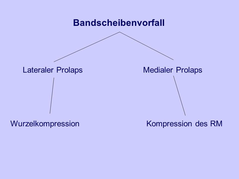 Bandscheibenvorfall Lateraler Prolaps Wurzelkompression Medialer Prolaps Kompression des RM